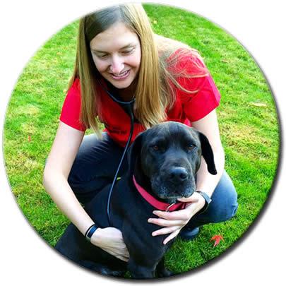 Mobile Veterinary Care | PNW Visiting Vet